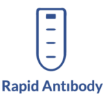Rapid Antibody